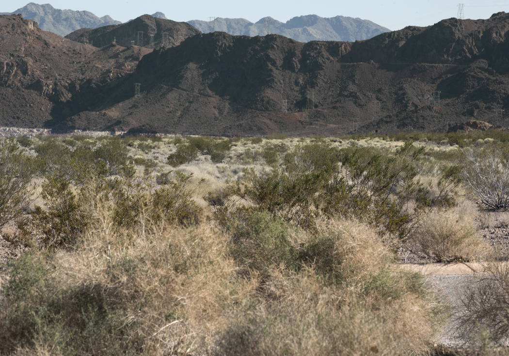 The former site of Boulder Beach at Lake Mead National Recreation Area near Boulder City on Jan. 25, 2019. (David Guzman/Las Vegas Review-Journal) @DavidGuzman1985