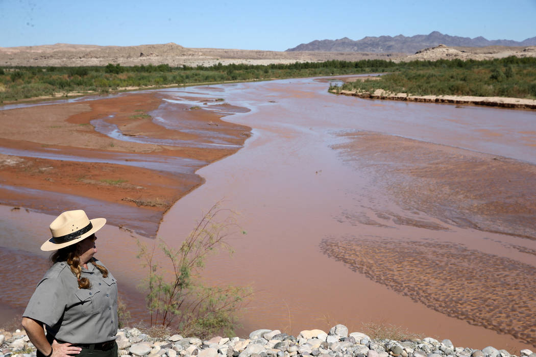 Lake Mead National Recreation Area spokeswoman Christie Vanover overlooks the Virgin River from the closed Overton Beach Marina Friday, Oct. 12, 2018. Vanover said the lake has receded about a mil ...