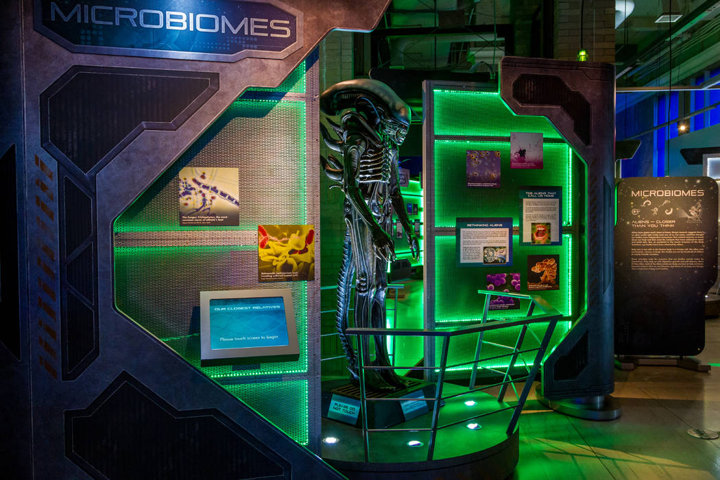 """Alien Worlds and Androids"" exhibit at Discovery Children's Museum (Discovery Children's Museum)"
