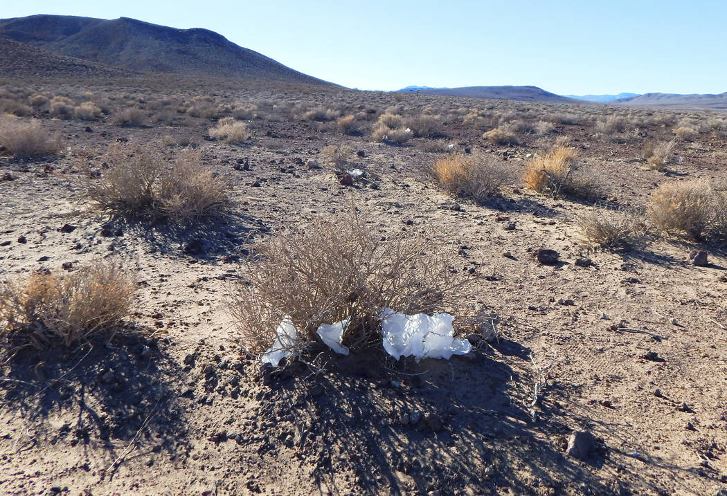 This undated photo shows toilet paper strewn throughout Death Valley National Park, Calif. (National Park Service via AP)