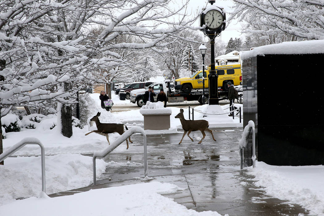 High Sierra Storm Again Wreaks Havoc On Nevada Legislature Las