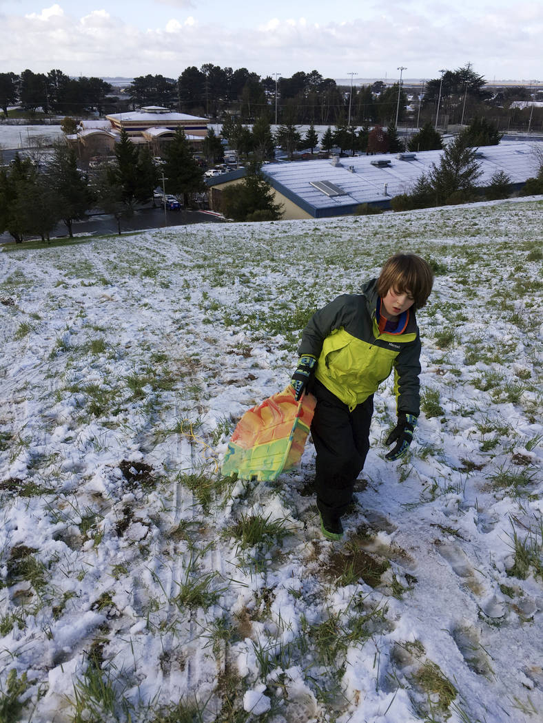 A young sledder makes his way up a snow-covered hillside, Sunday, Feb. 10, 2019, in Arcata, Calif. The latest in a series of storms dusted Northern California beaches with snow and caused whiteout ...