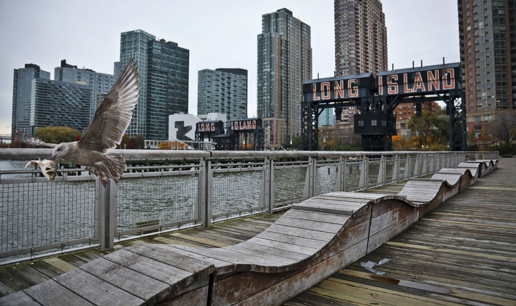"""A sea gull flies off holding fish scraps near a former dock facility, with """"Long Island"""" painted on old transfer bridges at Gantry State Park in the Long Island City section of the Queens Borough ..."""
