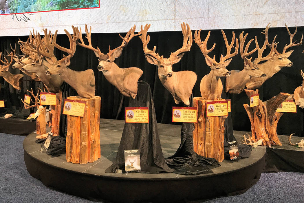 Quality taxidermy is always popular with hunters and other wildlife enthusiasts. These mule deer are part of the Mossback display at the 2019 Western Hunting & Conservation Expo in Salt Lake City. ...