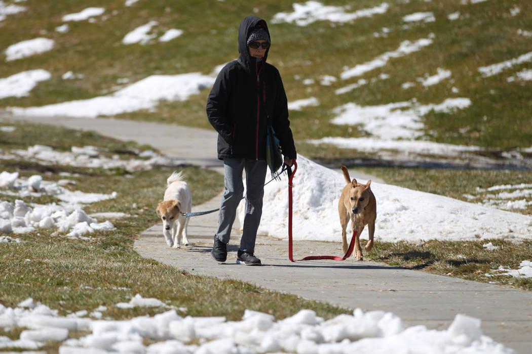 Gloria Brant of Las Vegas walks her dogs at Willows Park in Las Vegas, Friday, Feb. 22, 2019. (Erik Verduzco/Las Vegas Review-Journal) @Erik_Verduzco