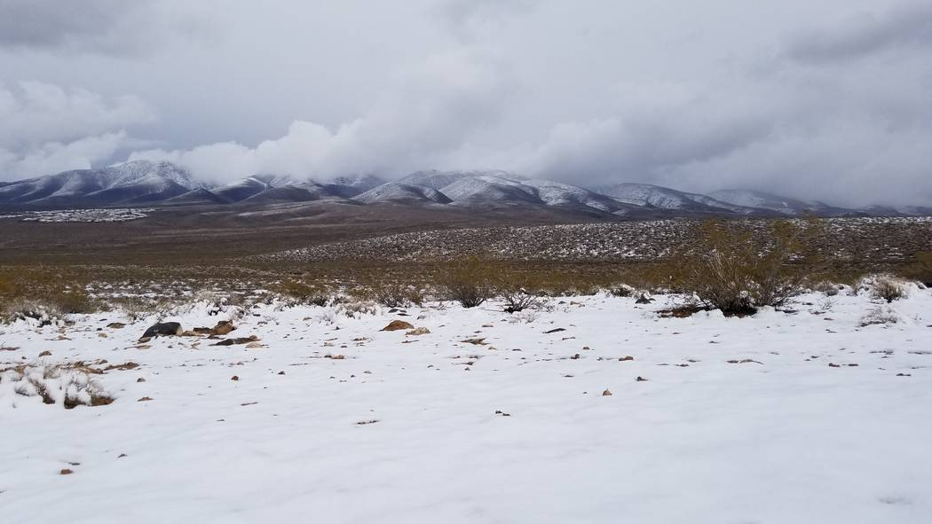Snow changed the look of the McCullough Range throughout the third week of February 2019. These photos were taken Feb. 21 near the Sloan Canyon Visitor Contact Station. (Natalie Burt)