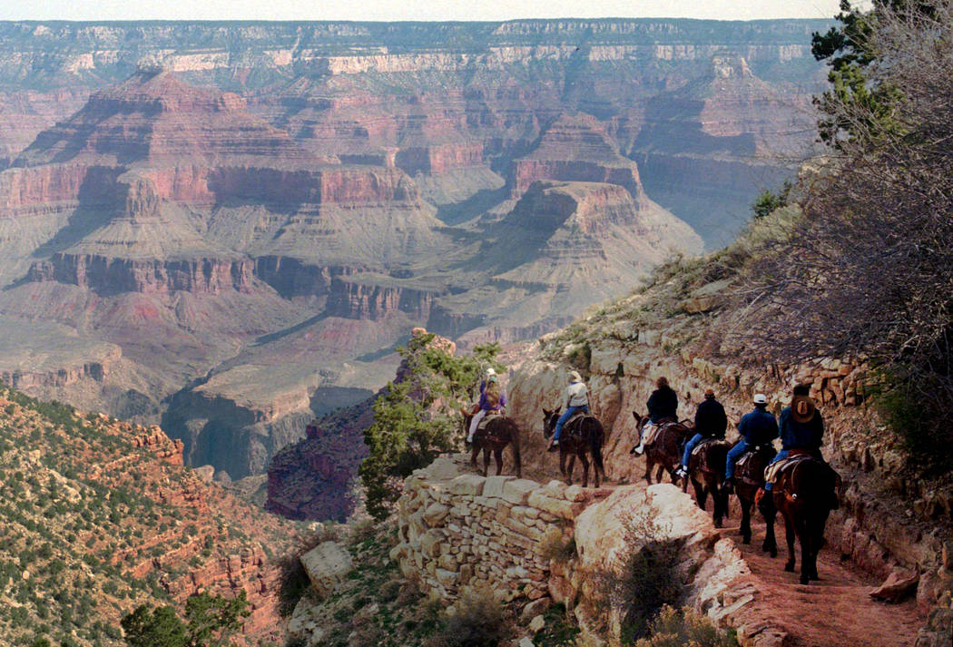 In this March 27, 1996, file photo, a mule train winds its way down the Bright Angel trail at Grand Canyon National Park, Ariz. The Grand Canyon is celebrating 100 years as a national park in 2019 ...