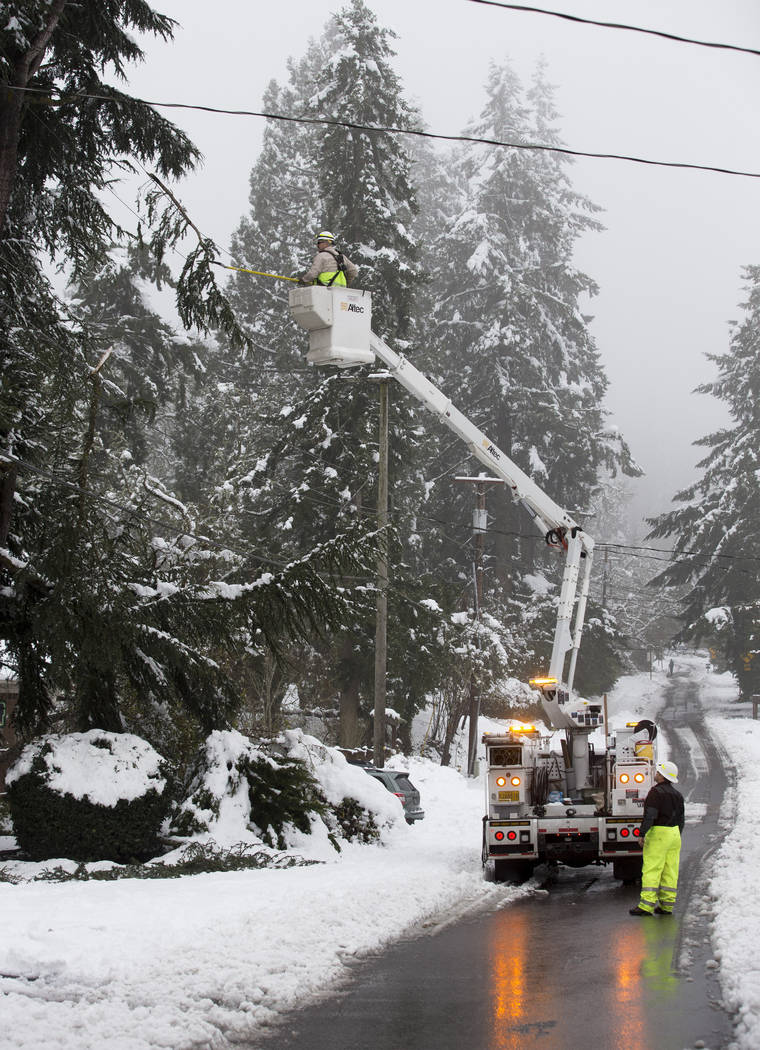 Eugene Water and Electric Board electric troubleshooter Brian Shepherd cuts a limb while trying to free it from a line as electrician Matt VanCurler monitors traffic on Friendly Street Tuesday, Fe ...
