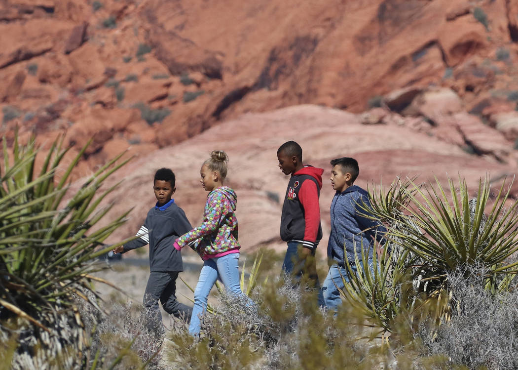 Elaine Wynn Elementary School students walk the trail during their field trip in Red Rock Canyon on Wednesday, Feb. 27, 2019, in Las Vegas. Bizuayehu Tesfaye Las Vegas Review-Journal @bizutesfaye