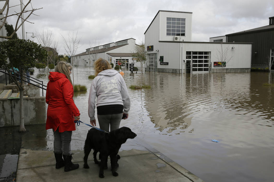 Two women and a dog look out at the flooded Barlow Market District, Wednesday, Feb. 27, 2019, in Sebastopol, Calif. (Eric Risberg/AP)
