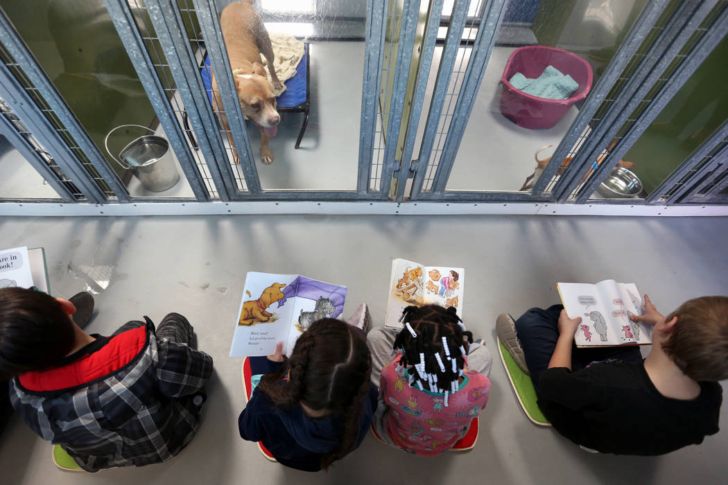 "CCSD first graders participate in the 4th Annual ""Reading to Dogs in Kennels"" event at The Animal Foundation during Nevada Reading Week in Las Vegas, Thursday, Feb. 28, 2019. (Caroline Brehman/Las ..."