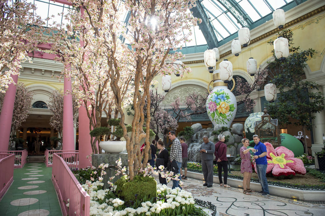 The Bellagio showcases its spring display at the Bellagio Conservatory & Botanical Gardens ...