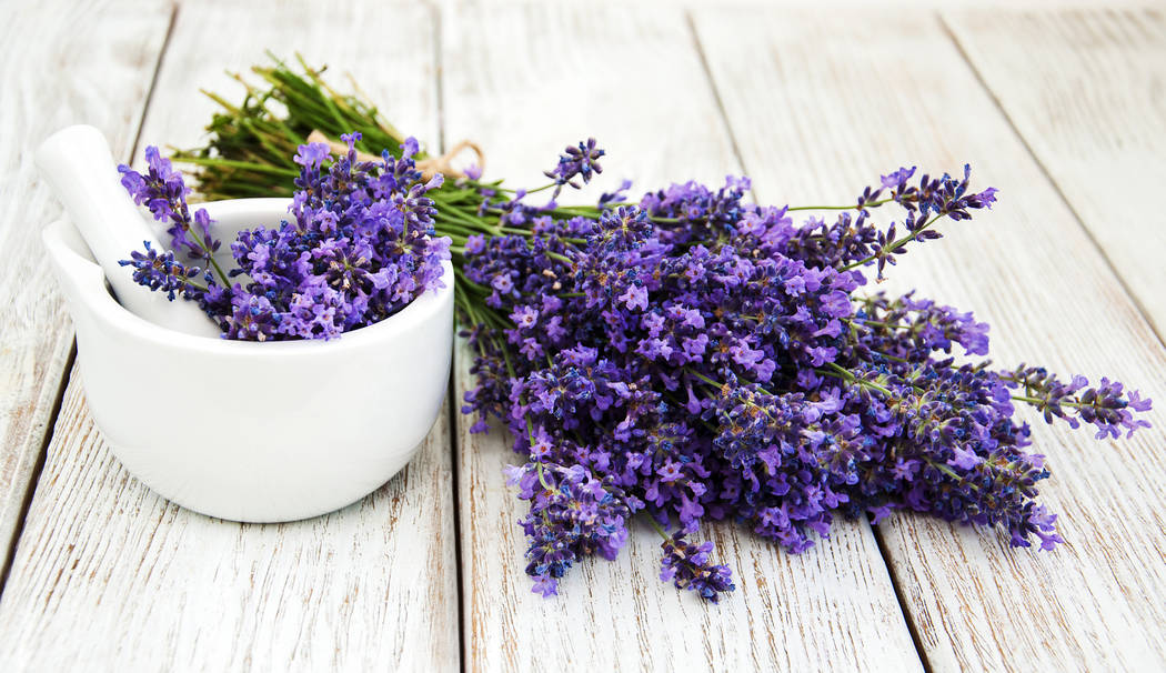 Lavender promotes relaxation. Home fragrance expert Rayda Vega suggests putting fresh lavender buds in a pretty dish in the bedroom. (Getty)