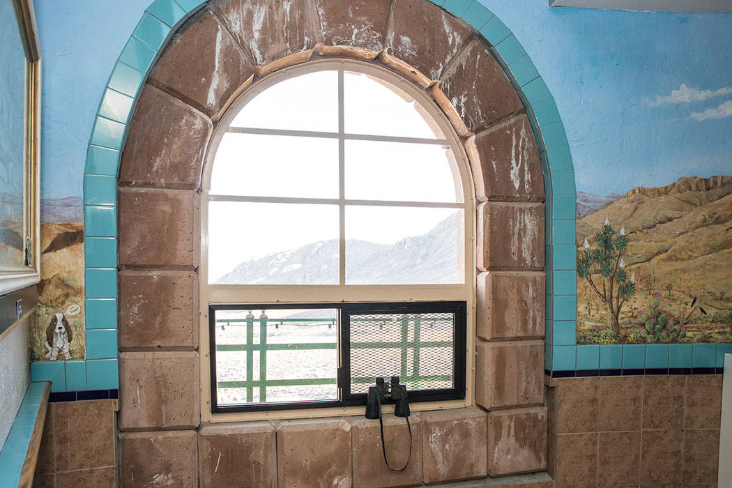 The windows have sweeping views of the mountains. (Tonya Harvey Real Estate Millions)