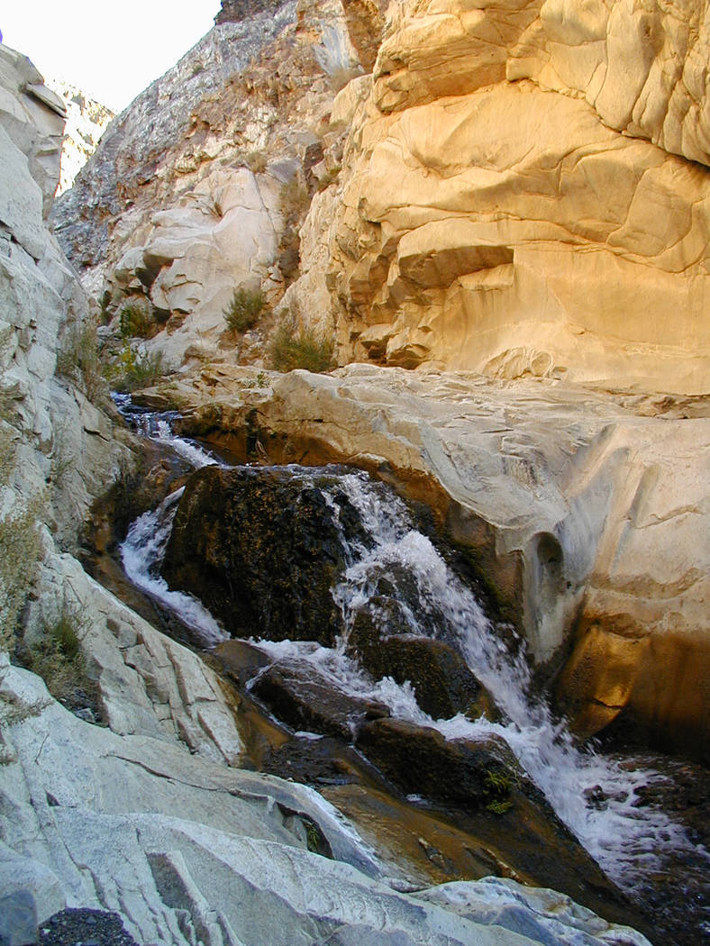 Water flows down Surprise Canyon Creek in an undated photo from Death Valley National Park. Congress just voted to designate 5.3 miles of the creek as wild and scenic. National Park Service