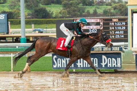 In this image provided by Benoit Photo, a horse races at Santa Anita Park in Arcadia, Calif. (Benoit Photo via AP)