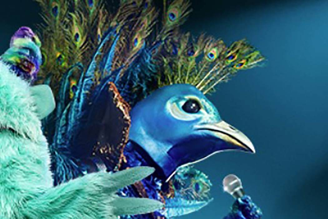 """The Peacock turns out to be Donny Osmond on """"The Masked Singer."""" (Facebook)"""