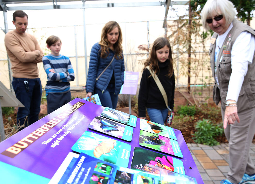 Robin Ramage, a volunteer, leads a tour at the Butterfly Habitat at Springs Preserve on Tuesday, March. 12, 2019, in Las Vegas. Bizuayehu Tesfaye Las Vegas Review-Journal @bizutesfaye