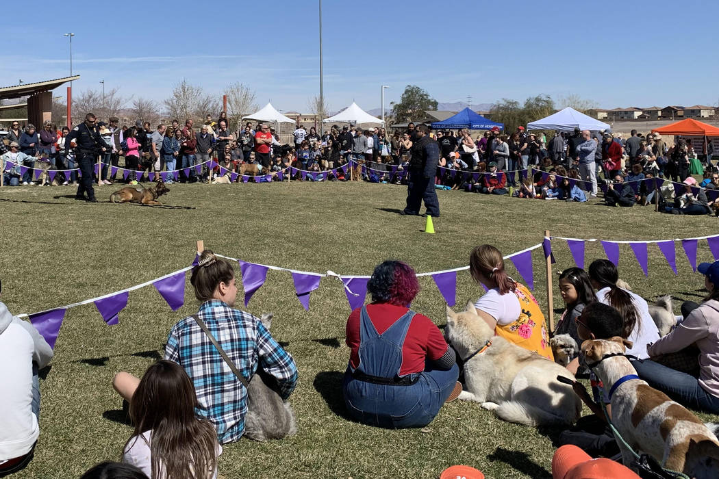 Bark in the Park attendees watch a demonstration by the Henderson Police Departmentճ K-9 unit at Cornerstone Park in Henderson, Saturday, March 9, 2019. (Jessica Terrones / Las Vegas Review- ...