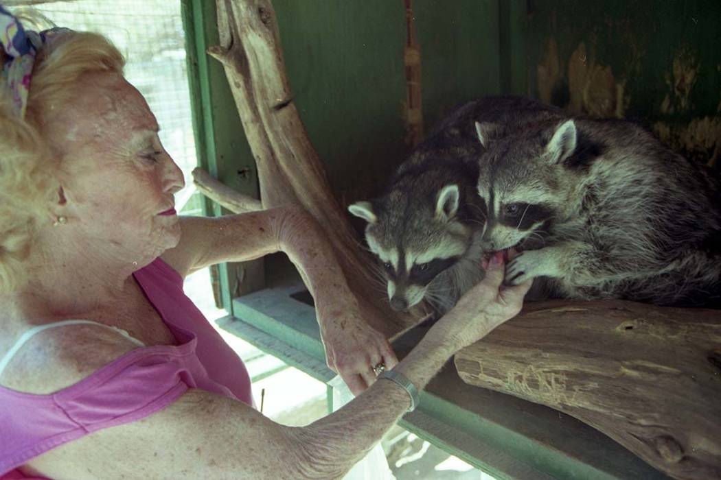Bonnie Springs/Old Nevada founder Bonnie Levinson feeds animals at her petting zoo in August 1997. (Las Vegas Review-Journal file)