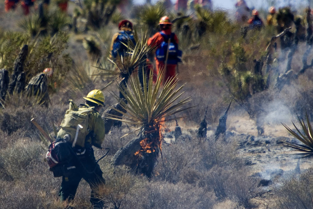 Firefighters work to extinguish a wildfire near Bonnie Springs in the Red Rock National Conservation Area Tuesday morning, July 3, 2007. The 400-acre wildfire led authorities to close the 13-mile ...