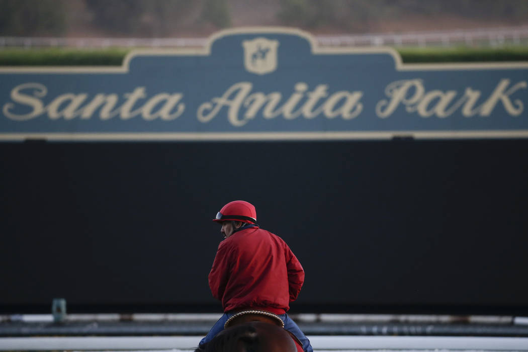 FILE - In this Oct. 29, 2014 file, photo, an outrider waits by the track as horses train for the Breeders' Cup horse races at Santa Anita Park in Arcadia, Calif. A person with direct knowledge of ...