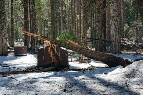 A damaged bear box after the recent heavy snowpack in Yosemite National Park, Calif. on Wednesday, March 13, 2019. The park announced that there will be late seasonal openings to facilities due to ...