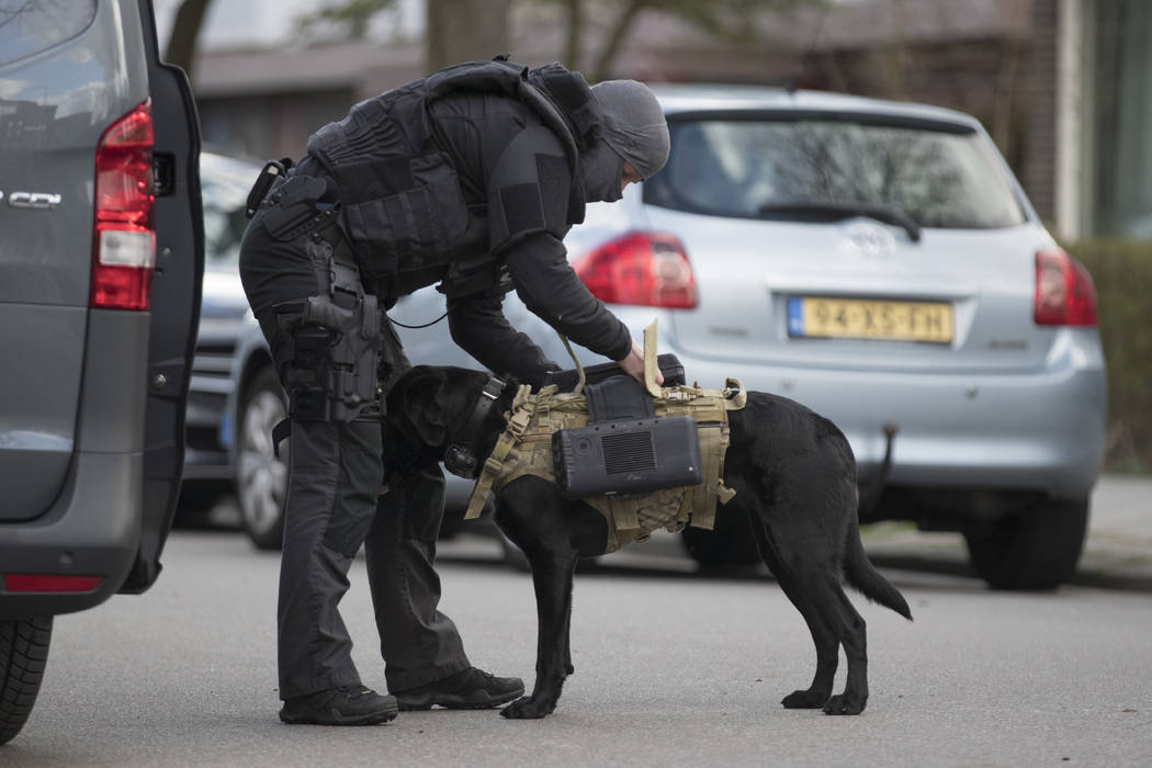 Dutch counter terrorism police install a camera on a sniffer dog as they prepare to enter a house after a shooting incident in Utrecht, Netherlands, Monday, March 18, 2019. Police in the central D ...