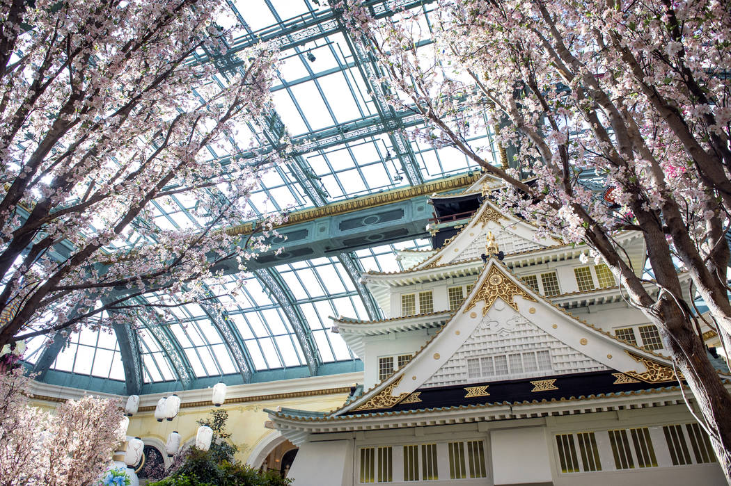 The Bellagio showcases its spring display at the Bellagio Conservatory & Botanical Gardens in Las Vegas, Monday, March 18, 2019. (Caroline Brehman/Las Vegas Review-Journal) @carolinebrehman