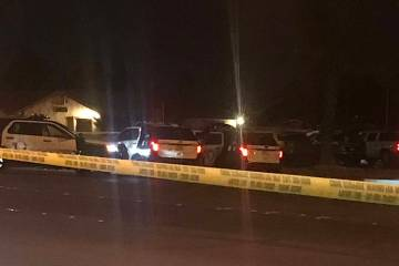 The Metropolitan Police Department is investigating an apparent murder-suicide Wednesday morning, March 20, 2019, in the central Las Vegas Valley. Eastern Avenue between Russell Road and Hacienda ...