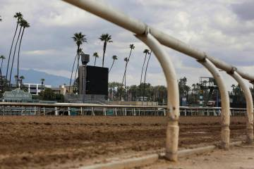 After reaching an agreement to delay implementation of a ban on race-day medication, management at Santa Anita Park now plans to reopen for racing Friday, March 29, 2019, in Arcadia, Calif. (AP Ph ...