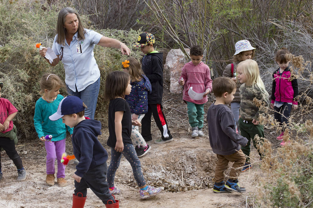 Naturalist Judy Walker leads children around small pits made by beavers during the Nature Tykes program at Clark County Wetlands Park in Las Vegas, Wednesday, March 20, 2019. The program incorpora ...