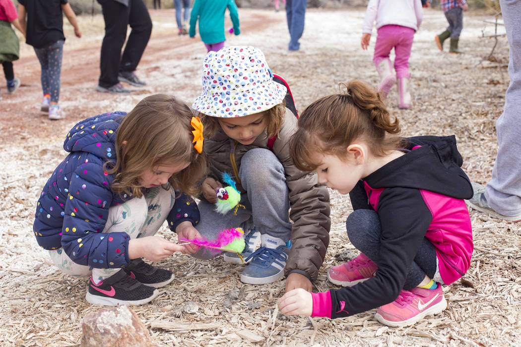 Isabella LaMon, 3, from left, Boone Schmidt, 5, and Alina Velaochaga, 4, look at an owl pellet during the Nature Tykes program at Clark County Wetlands Park in Las Vegas, Wednesday, March 20, 2019 ...