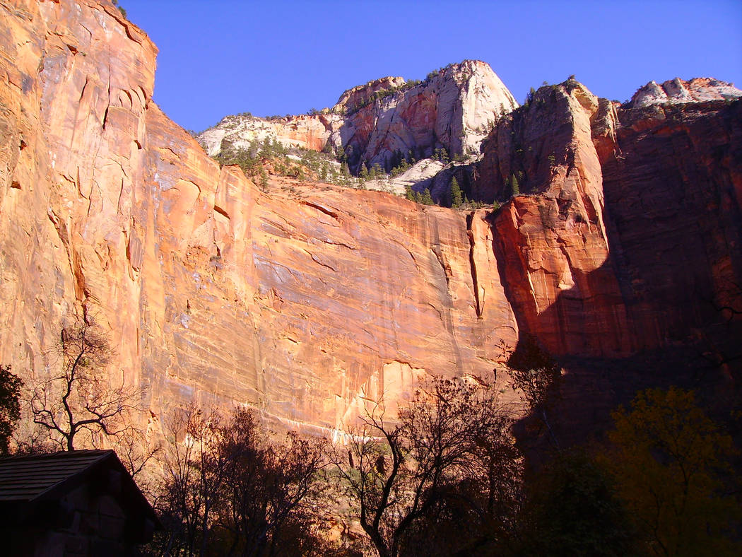 High sandstone walls and monoliths provide a colorful backdrop along Zion Canyon Scenic Drive. (Deborah Wall/Las Vegas Review-Journal)