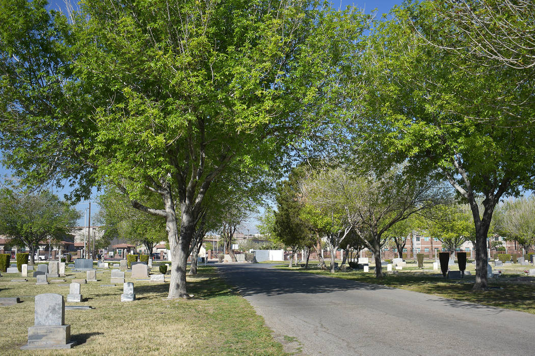 A road through Woodlawn cemetery surrounded by trees on Monday, March 25. Rachel Spacek/Las Vegas Review-Journal @RachelSpacek