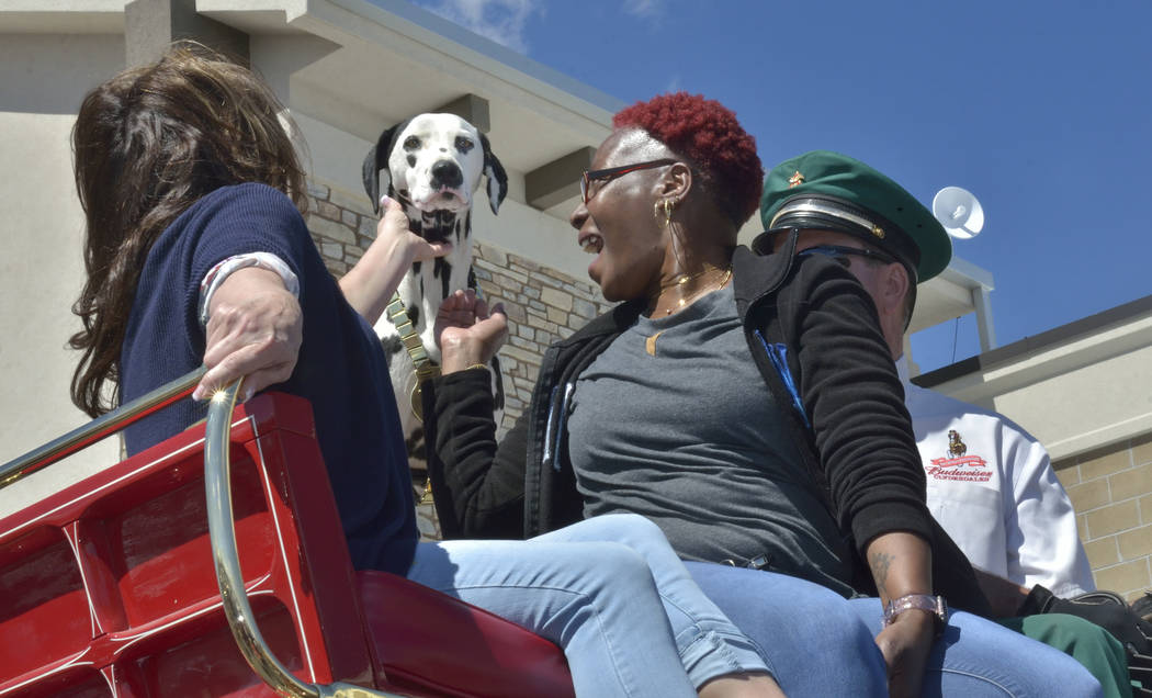Alice, the Budweiser Clydesdales' mascot, is given some attention by Diana Bearden, left, and Jenny Porter during a visit by the Clydesdales at the Smith's Marketplace at 9710 W. Skye Canyo ...