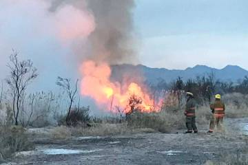 A brush fire at the Wetlands Park, north of Sam Boyd Stadium, burns early Wednesday, March 27, ...