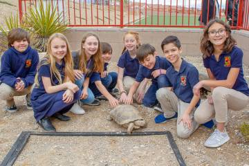 Members of the Tortoise Team at Doral Academy Red Rock Elementary School welcome Rocky the tort ...
