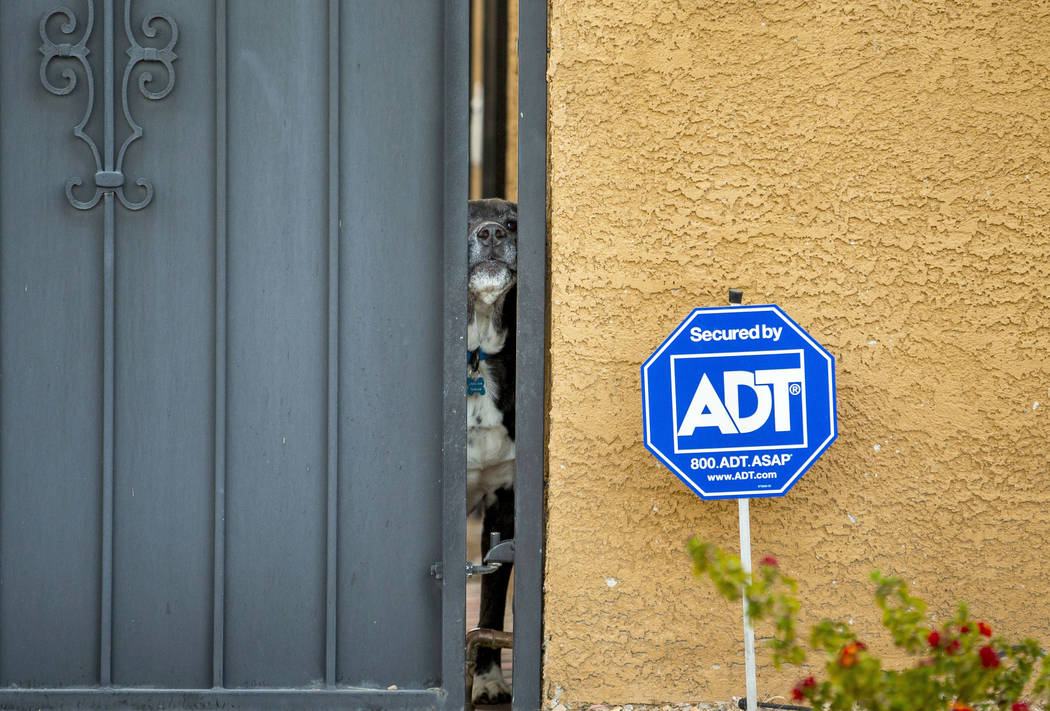 A dog peeks outside through the gate of a house about Huntridge Circle Park, Wednesday, March 2 ...