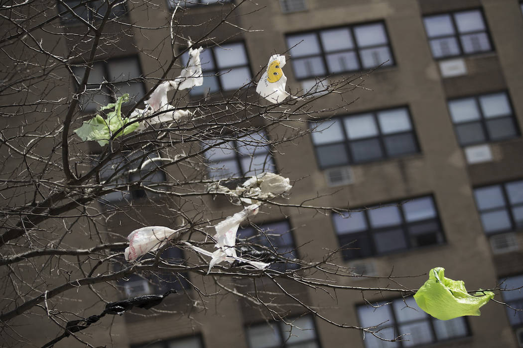Plastic bags are seen stuck to the branches of a tree in the East Village neighborhood of Manha ...
