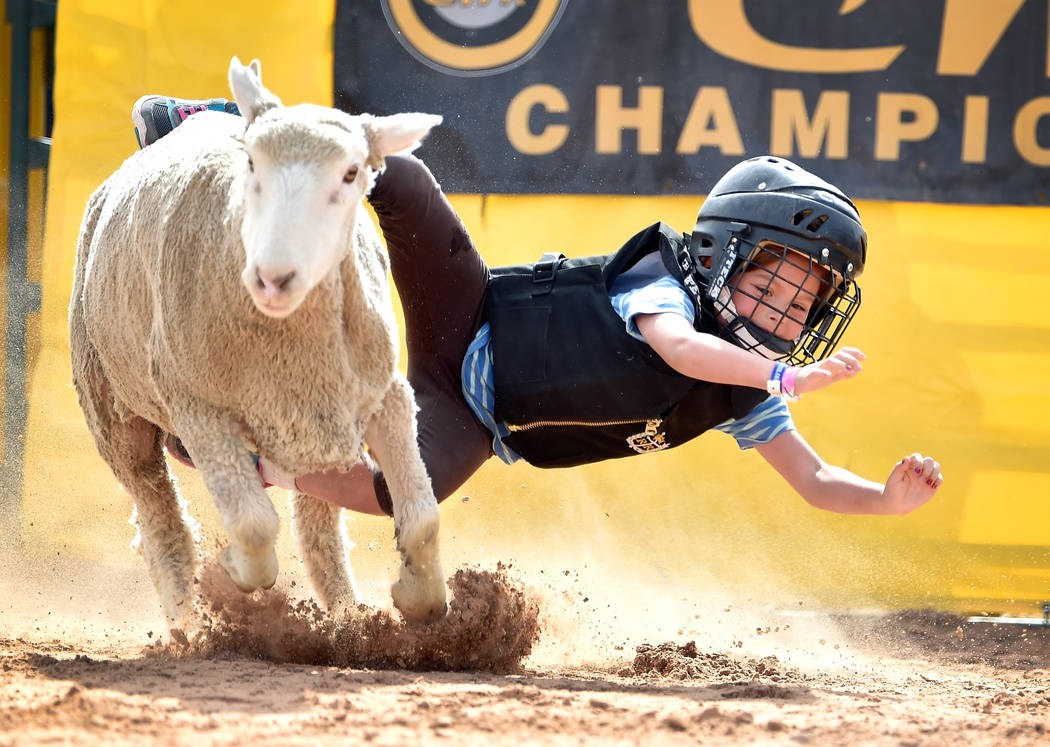 Preslee Totton, 6, of Overton, dives off her mount during a qualifying round of mutton bustin a ...