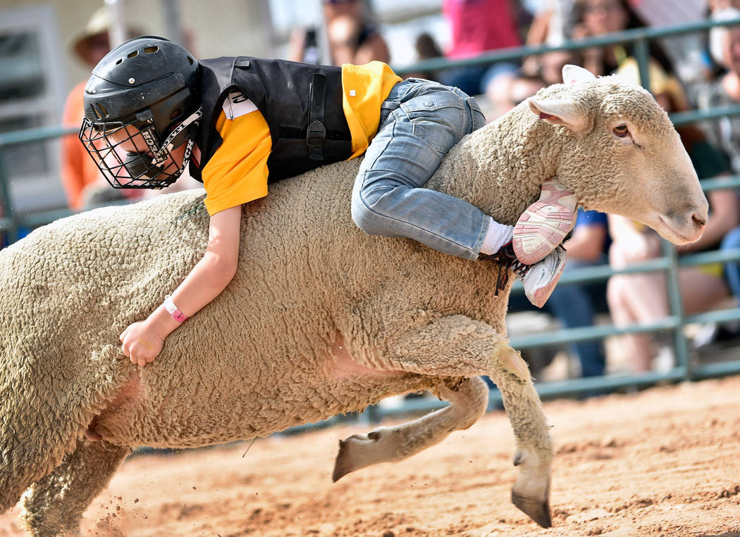 Jensen Aidan, 6, of Henderson, rides backwards on his mount during a qualifying round of mutton ...