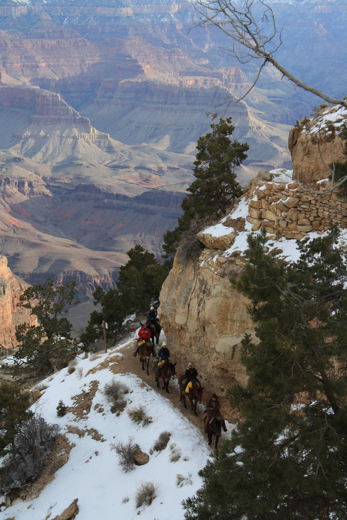 The Bright Angel Trail in Grand Canyon National Park. (Deborah Wall/Las Vegas Review-Journal)