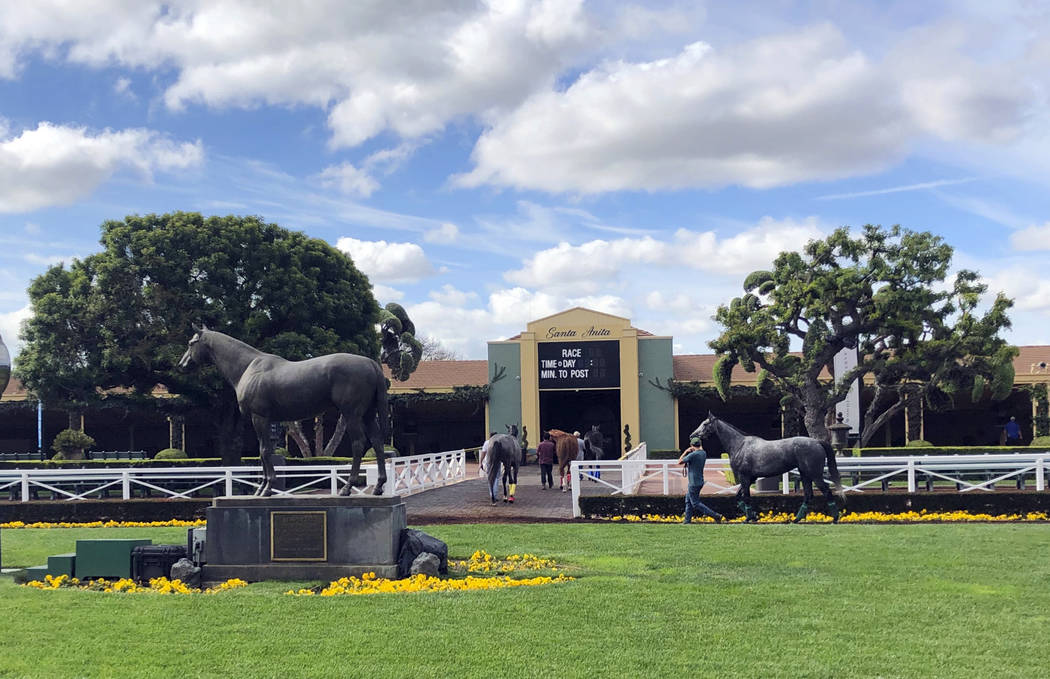 Horses are led to paddocks past the Seabiscuit statue during workouts at Santa Anita Park, as m ...