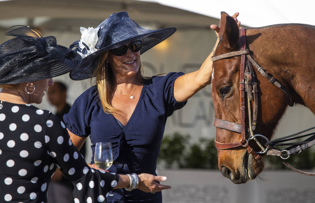 Guests get up and close to one of the many horses in play during the Las Vegas Polo Classic at ...