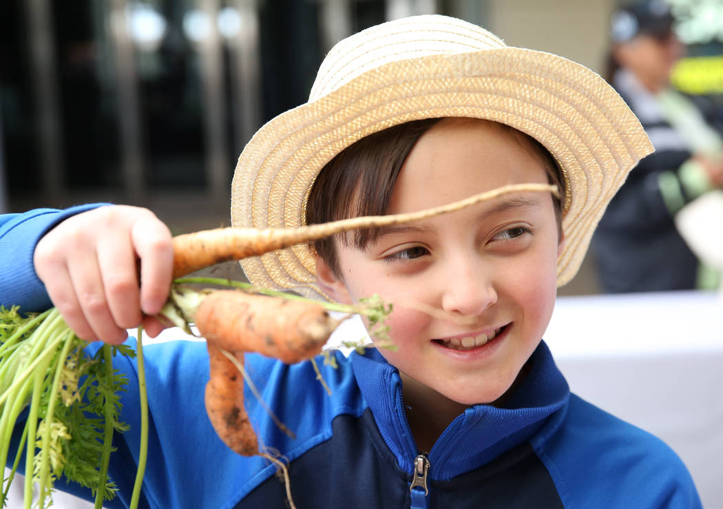 Doral Academy student Carter Kakita, 9, displays his carrots at Green Our Planet's Giant Studen ...