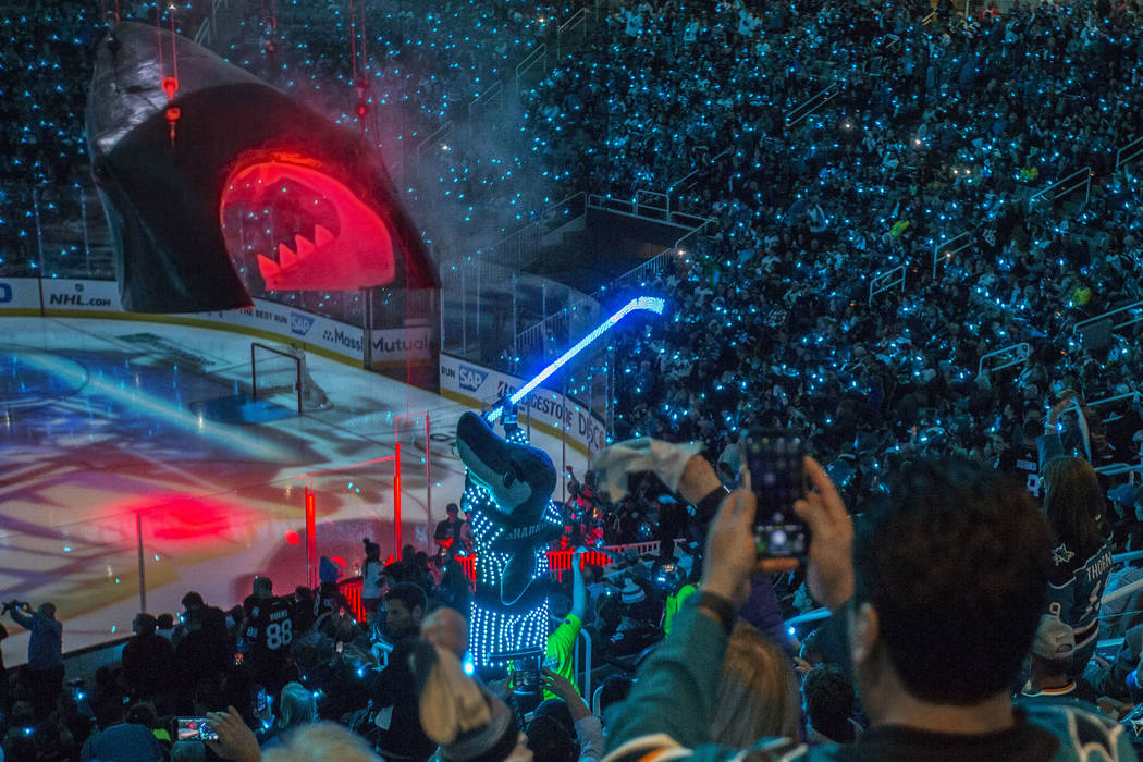 The massive shark head San Jose players skate through before hitting the ice is lowered at SAP ...