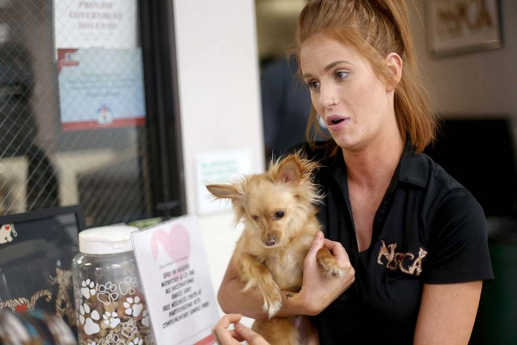 Foster Coordinator Shelby Haycock holds Fetty, a dog she adopted from work, as she speaks to th ...