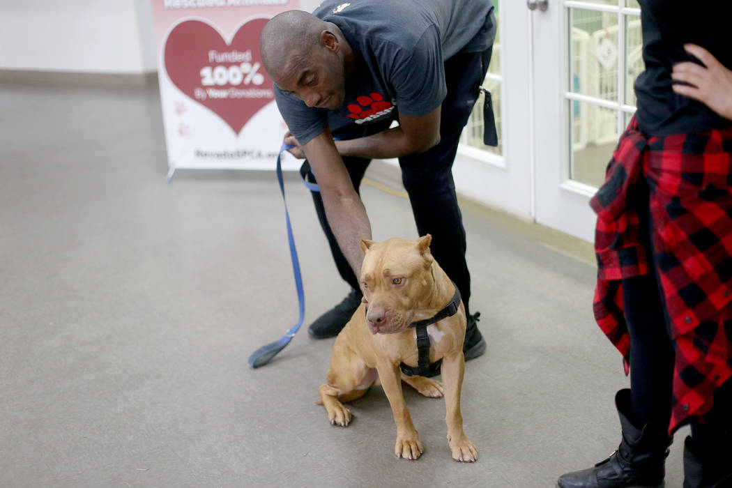 Kettle Manager Dwane Crawford pets Gunner at the Nevada Society for the Prevention of Cruelty o ...