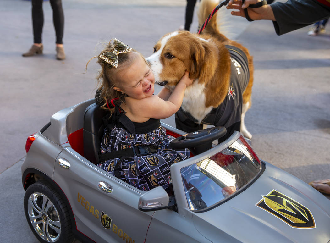 "Azlynn Opipari, 2, aka the ""Golden Knights Princess"" gets a kiss from Nash Vegas befo ..."